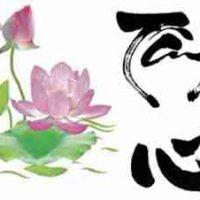 vietnam translation company, translation company in Vietnam, translation, translations